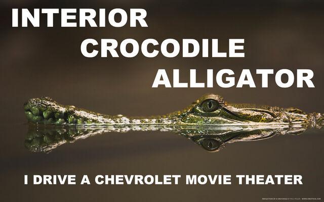 File:Interior crocodile alligator by youoweadam-d32awea.jpg