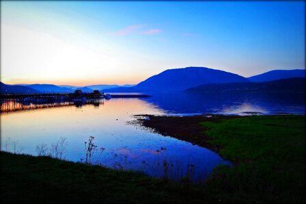 Lake Salmon