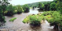River Tevvyn