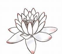 File:Lotusss.jpg