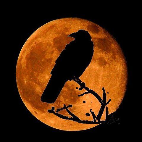 File:Blood Moon.jpg