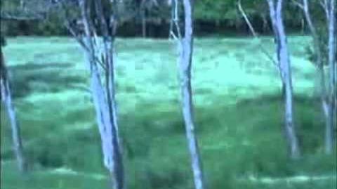 Learn Aerokinesis - Subliminal Mediation