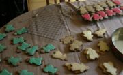 Spreecookies