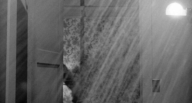 File:Shower 30.jpg