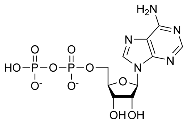 File:ADP chemical structure.png