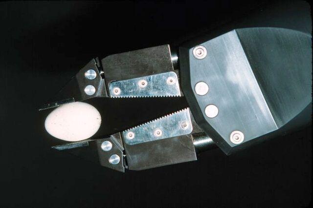 File:Robot hand holding an egg.jpg
