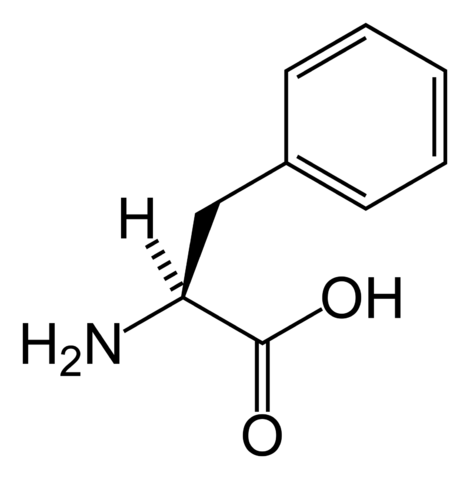 File:L-phenylalanine-skeletal.png