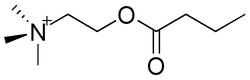 Butyrylcholine