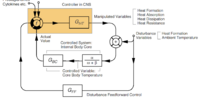Thermoregulation (body)