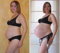 File:Pregnancy comparison.jpg