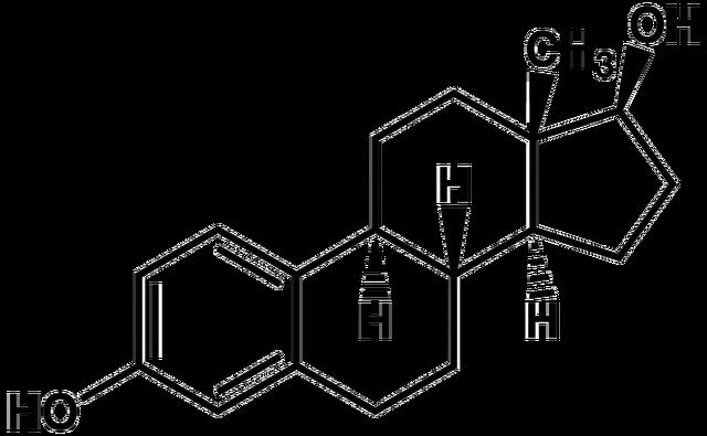File:Estradiol2.png