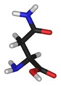 L-asparagine-3D-sticks