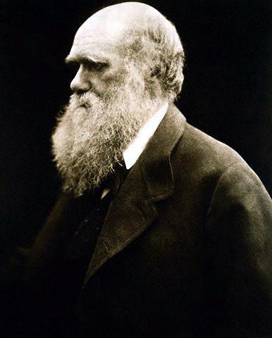 File:Charles Darwin by Julia Margaret Cameron.jpg