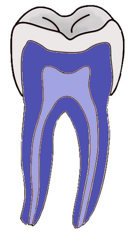 File:DentistryLogo.png