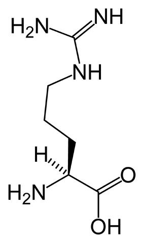 File:L-arginine-skeletal-(tall).png