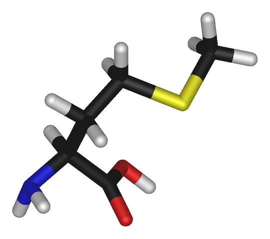 File:L-methionine-3D-sticks.png
