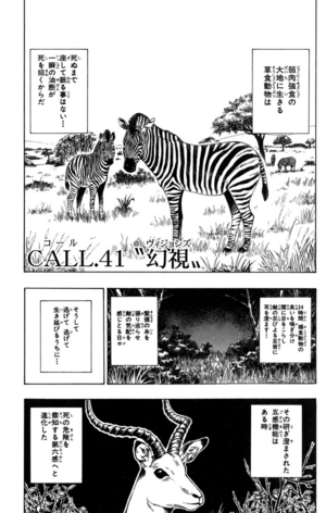 Chapter 41