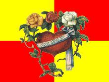 Bandeira-novabelmont.jpg