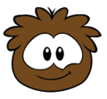 Brownpuff