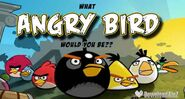 Angry-birds-eastera 600x320