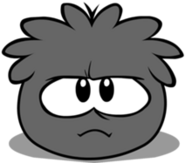Black puffle new look