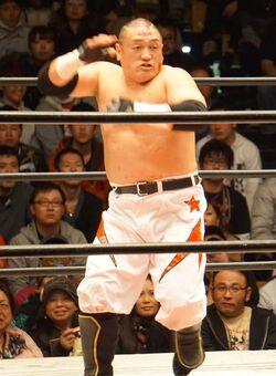 Hoshino