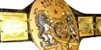 Asia Tag Team Championship