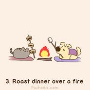Roast Over A Fire