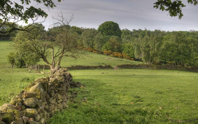 File:Derbyshire Landscape.jpg