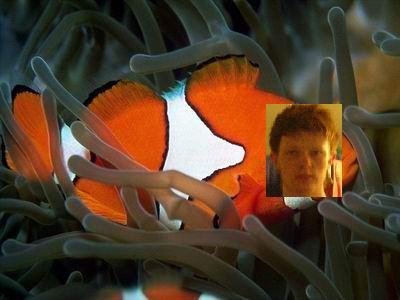 File:Scr-fish.JPG
