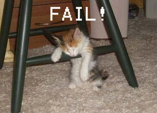File:Cat Fail.jpg