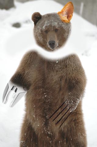 File:Panic Auron Bear.png
