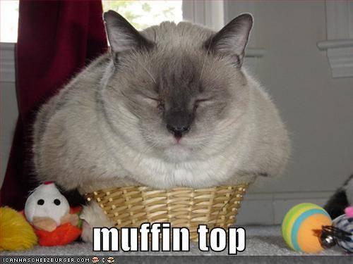 File:Muffins yum.jpg