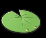 Lilypad-0
