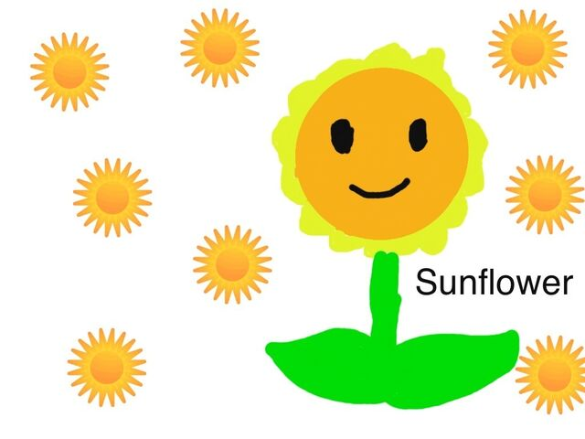File:Another Sunflower drawing.jpg