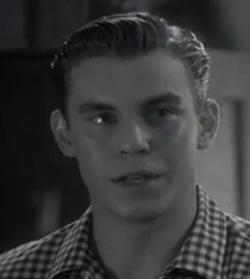 Travis Fine as teenaged Will Kinman