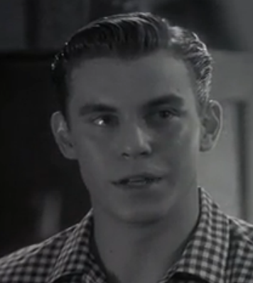 File:Travis Fine as teenaged Will Kinman.png