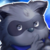 Rain Raccoon (Lord) Icon