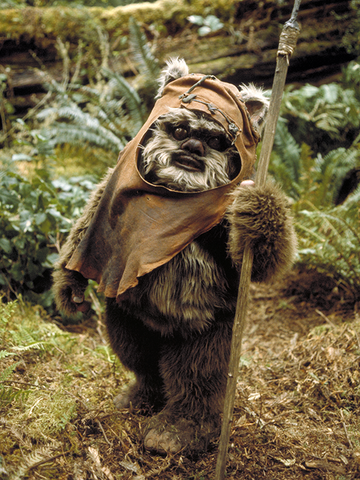 File:Wicket.png