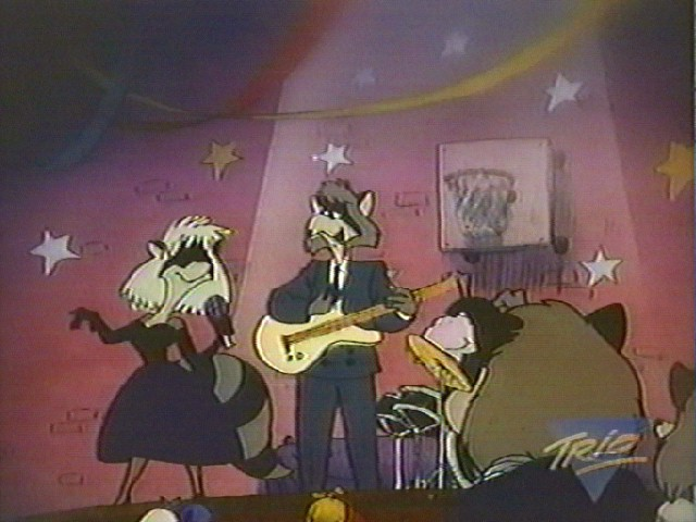 File:Raccoon band.jpg