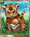 Holy Tiger Cub