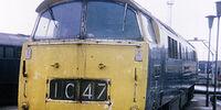 British Railways Class 52 Western Rifleman