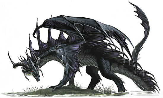 Black Dragon 07