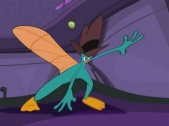 Perry WTFFF