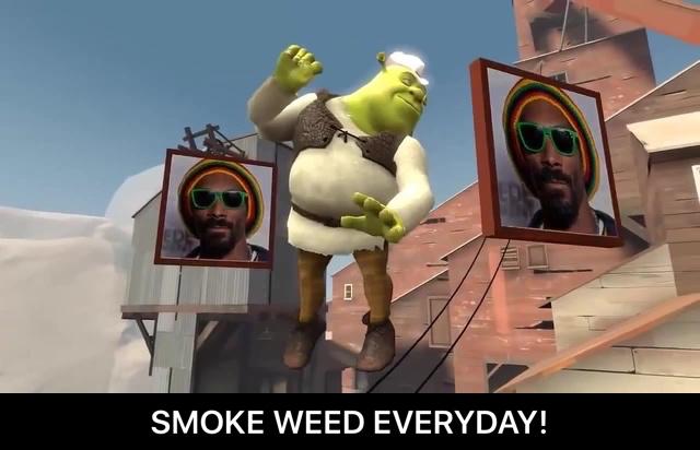 File:Shrek Smoke Weed Everyday dance showdown meme sfm .jpeg