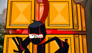Club Ninja-dise 100