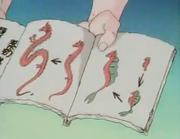 Dragon Lifecycle