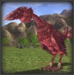 Plik:Poultry02.jpg