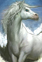 Unicorn Evo 2 art card