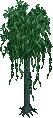 Jungle tree 5